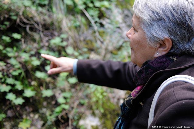 INCONTRI – A Felitto da Rosi Di Stasi, una signora dalle mille iniziative per recuperare il territorio